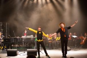 NAUJAMETIS koncertas su VDU kameriniu orkestru 2013