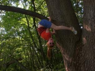 aiste-medyje